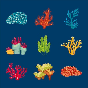 Pacote de nove elementos da natureza da vida marinha de coral