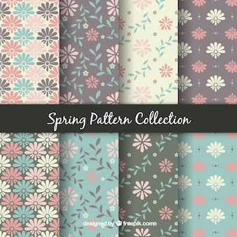Pacote de oito padrões de primavera