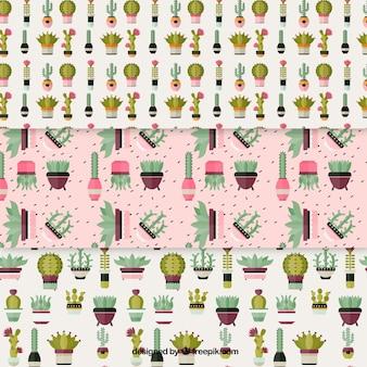 Pacote de padrões de cactos e panelas em design plano