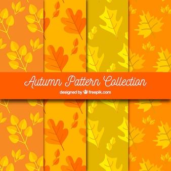 Pacote de padrões de outono com folhas secas