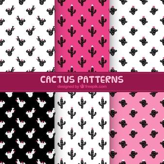 Pacote de padrões decorativos de cactos