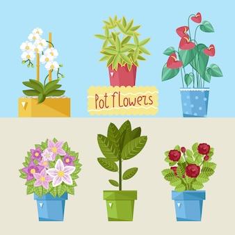 Pacote de plantas de casa bonita