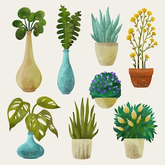 Pacote de plantas de casa pintadas em aquarela