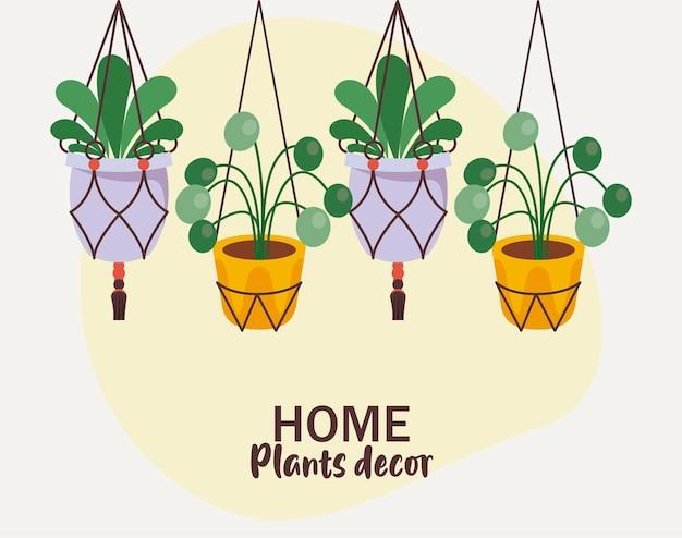 Pacote de quatro plantas caseiras em vasos de cerâmica com decoração pendurada e letras