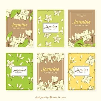 Pacote de seis cartões retros com jasmim desenhado à mão