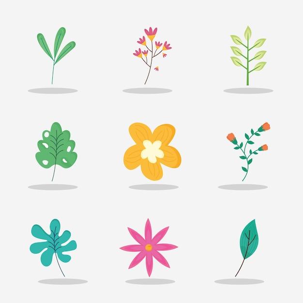 Pacote de sete flores da primavera com ilustração de folhas