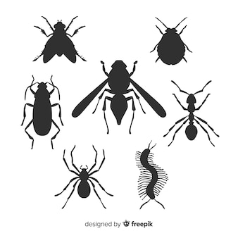 Pacote de silhueta de insetos