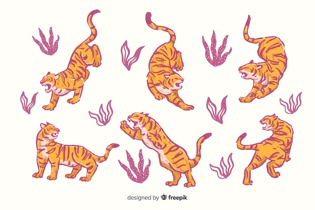 Pacote de tigres de mão desenhada