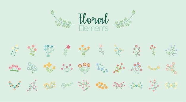 Pacote de trinta elementos planos de jardim de flores