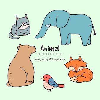 Pacote desenhado a mão de animais bonitos