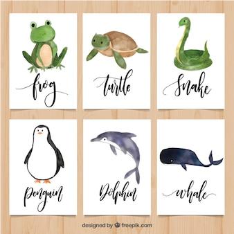 Pacote encantador de cartões com animais de aquarela