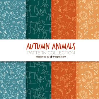 Pacote moderno de padrões de animais de outono