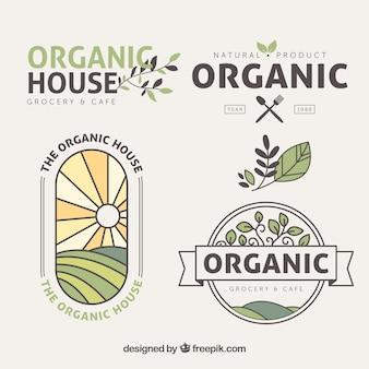 Pacote plano de adesivos de alimentos orgânicos com detalhes coloridos