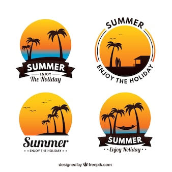 Pacote, quatro, palma, árvore, etiquetas, pôr do sol