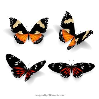 Pacote realista de quatro borboletas