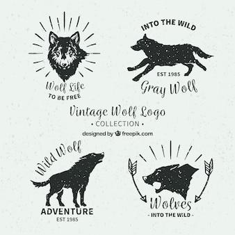 Pacote retro de logotipos de lobos desenhados a mão
