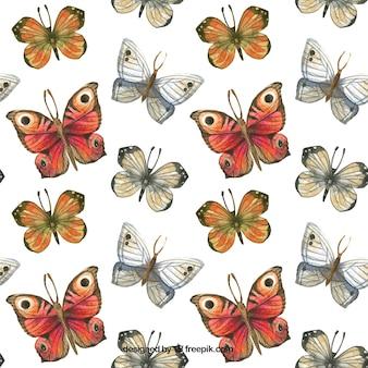 Padrão de aquarela borboletas bonitas