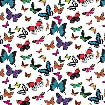Padrão de borboleta em fundo branco