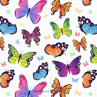 Padrão de borboletas planas