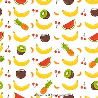Padrão de coleta de frutas