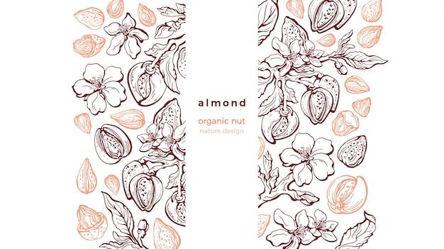 Padrão de esboço de nozes de amêndoa. ilustração gráfica. ramo de arte desenhado à mão, fruta, folha de textura, flor
