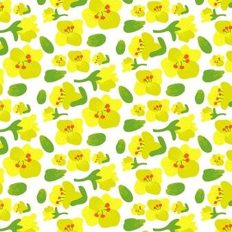 Padrão de flor de canola de colza