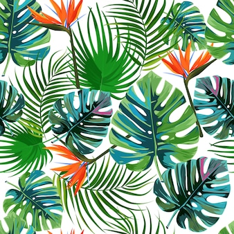 Padrão de folhas de palmeira exóticas tropicais.