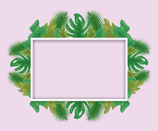 Padrão de folhas verdes tropicais com moldura