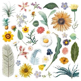 Padrão de fundo floral