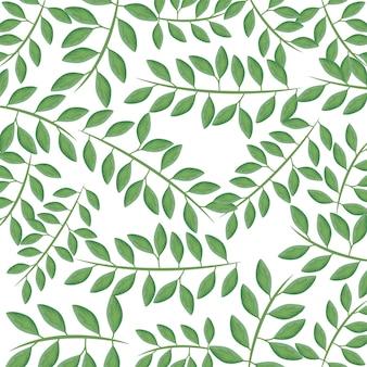 Padrão de galhos com folhas naturais