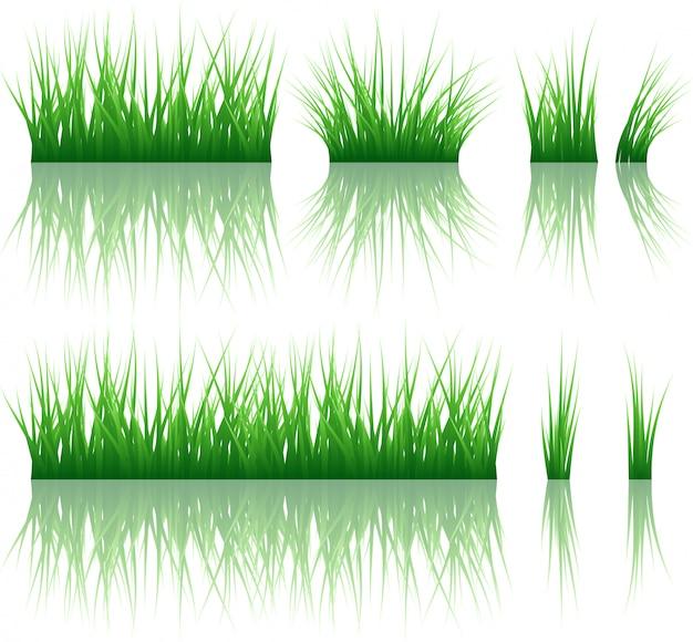 Padrão de grama refletida