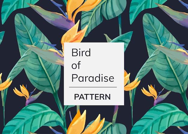 Padrão de mão desenhada ave do paraíso