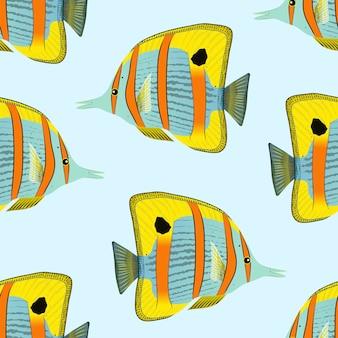 Padrão de peixe-borboleta. animal subaquático de recife de coral exótico.