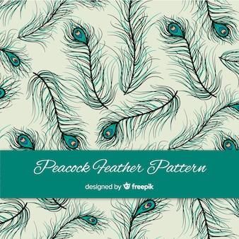 Padrão de penas de pavão linda mão desenhada