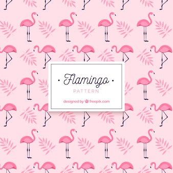 Padrão de verão flamenco