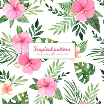 Padrão de verão tropical com flores em aquarela