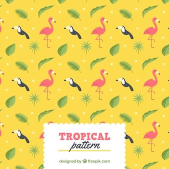 Padrão de verão tropical com pássaros diferentes