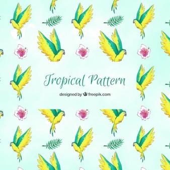 Padrão de verão tropical com pássaros e flores