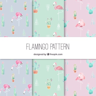 Padrão elegante de flamingo