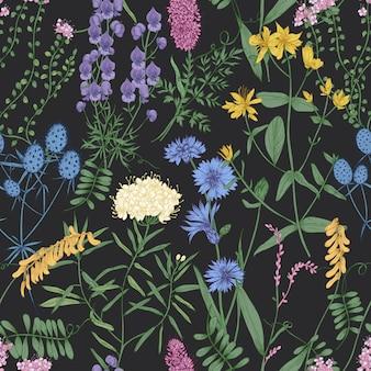 Padrão sem emenda botânico com românticas flores desabrochando selvagens, ervas floridas do prado e plantas herbáceas em fundo preto.