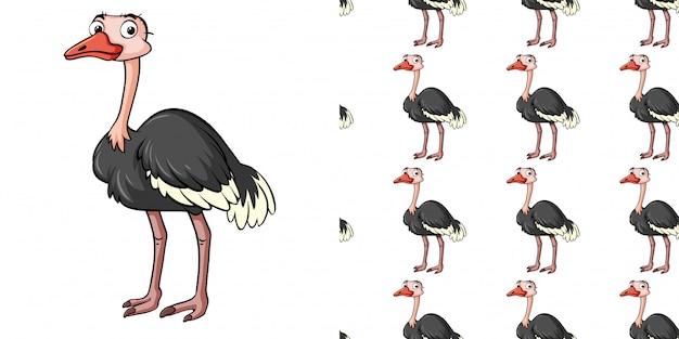 Padrão sem emenda com avestruz bonitinho
