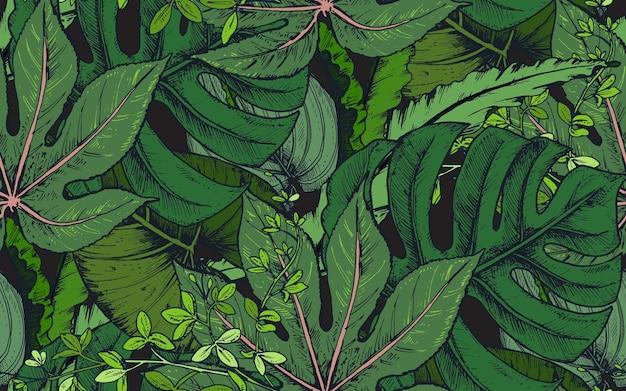 Padrão sem emenda com composições de folhas de palmeira tropical desenhada à mão, plantas da selva. Vetor Premium