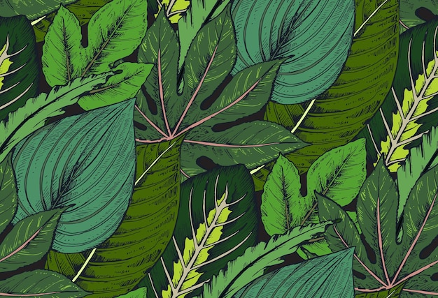 Padrão sem emenda com composições de folhas de palmeira tropical desenhada à mão, plantas da selva.