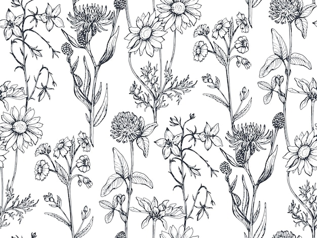 Padrão sem emenda com ervas e flores