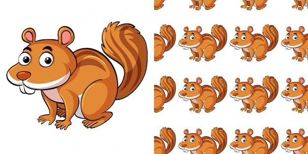 Padrão sem emenda com esquilo bonito
