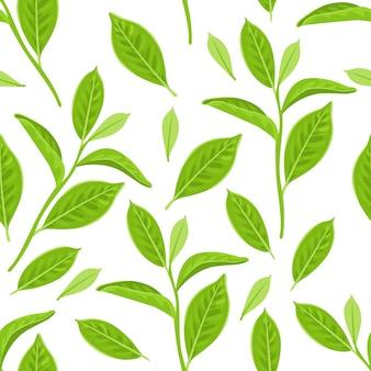 Padrão sem emenda com folhas de chá verde em fundo branco.
