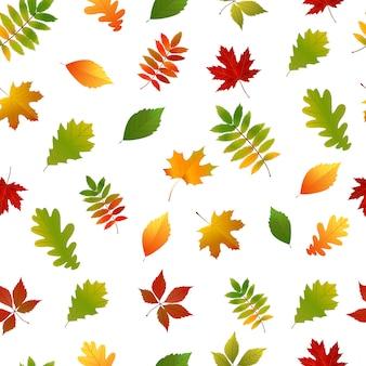 Padrão sem emenda com folhas de outono amarelo, verde e vermelho conjunto.