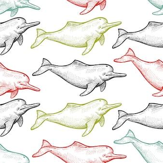 Padrão sem emenda com golfinho animal de rio.
