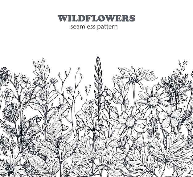 Padrão sem emenda com mão desenhada ervas e flores sobre fundo branco