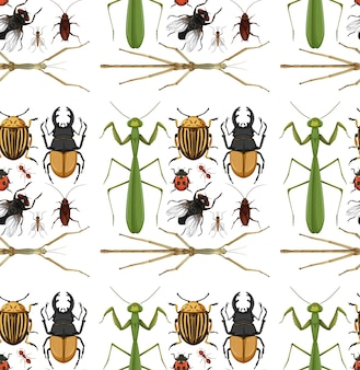 Padrão sem emenda com muitos insetos em fundo branco